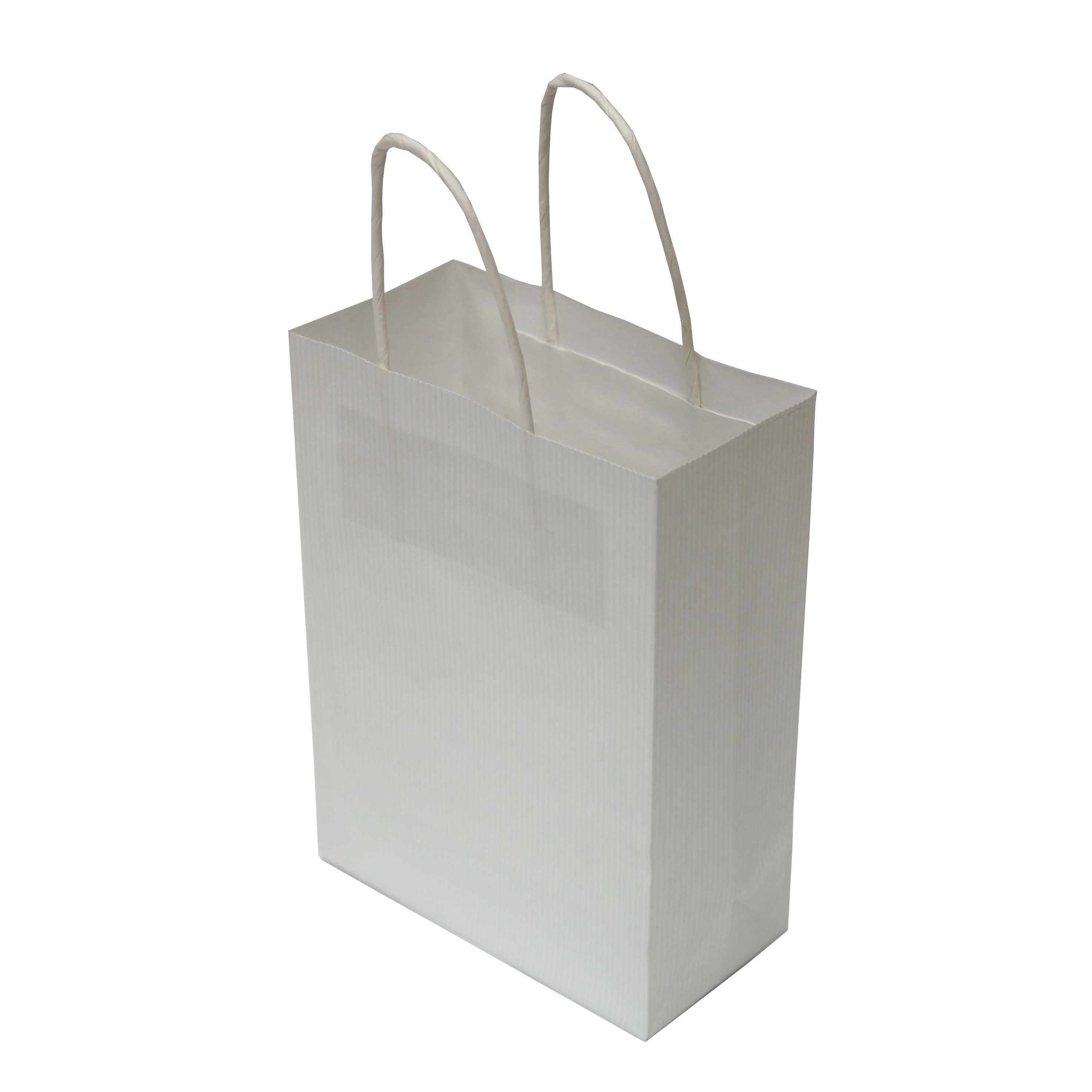 WHITE TWISTED HANDLES PAPER BAG (WITH BASE CARD)